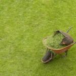 Lekker sportief tuinieren